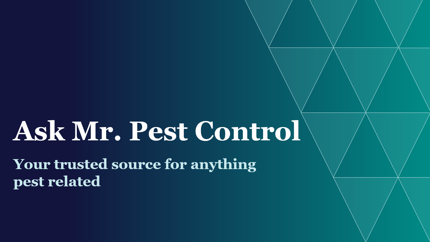 Ask Mr. Pest Control