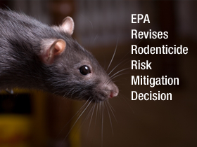 Rodenticide Mitigation Decision – EPA 2012 Revision