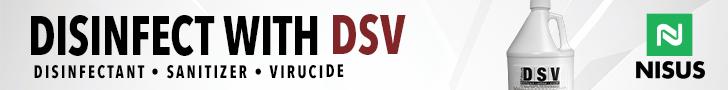 DSV 728x90 Mar2020