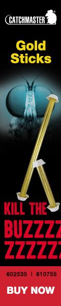 Veseris GoldSticks 120x600 072121 A