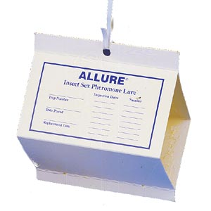 Allure Pt4 Imm Moth Kit