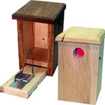 Sparrow Bird House Trap