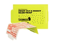 Fruit Fly Glue Trap 100FF