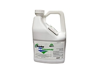 Roundup Pro Concentrate
