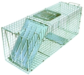ANSWER MEDIUM PEST LIVE CAGE TRAP