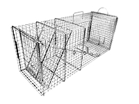 609 - XL Feral Cat and Raccoon Trap