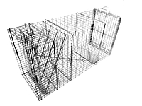 609.5 - Bobcat, Fox, Small Dog Trap with One Trap Door and Rear Access Door